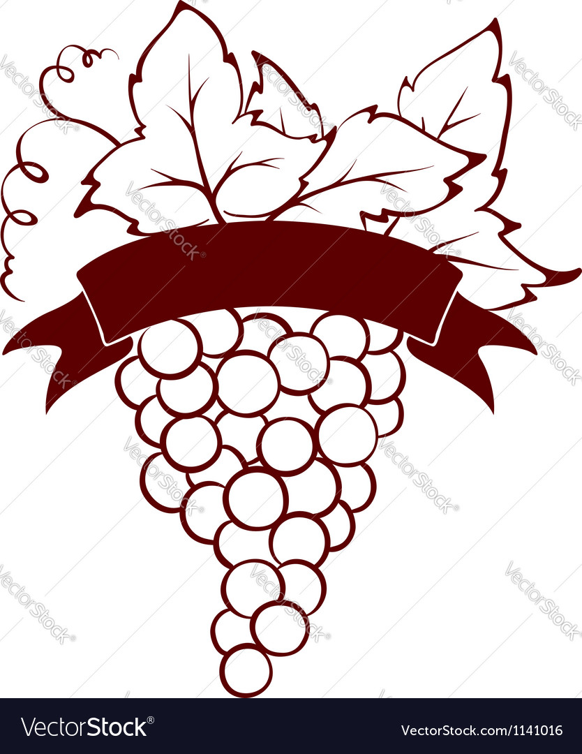 Bunch of grapes with ribbon vector | Price: 1 Credit (USD $1)