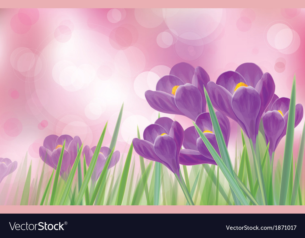 Flowers spring vector | Price: 1 Credit (USD $1)