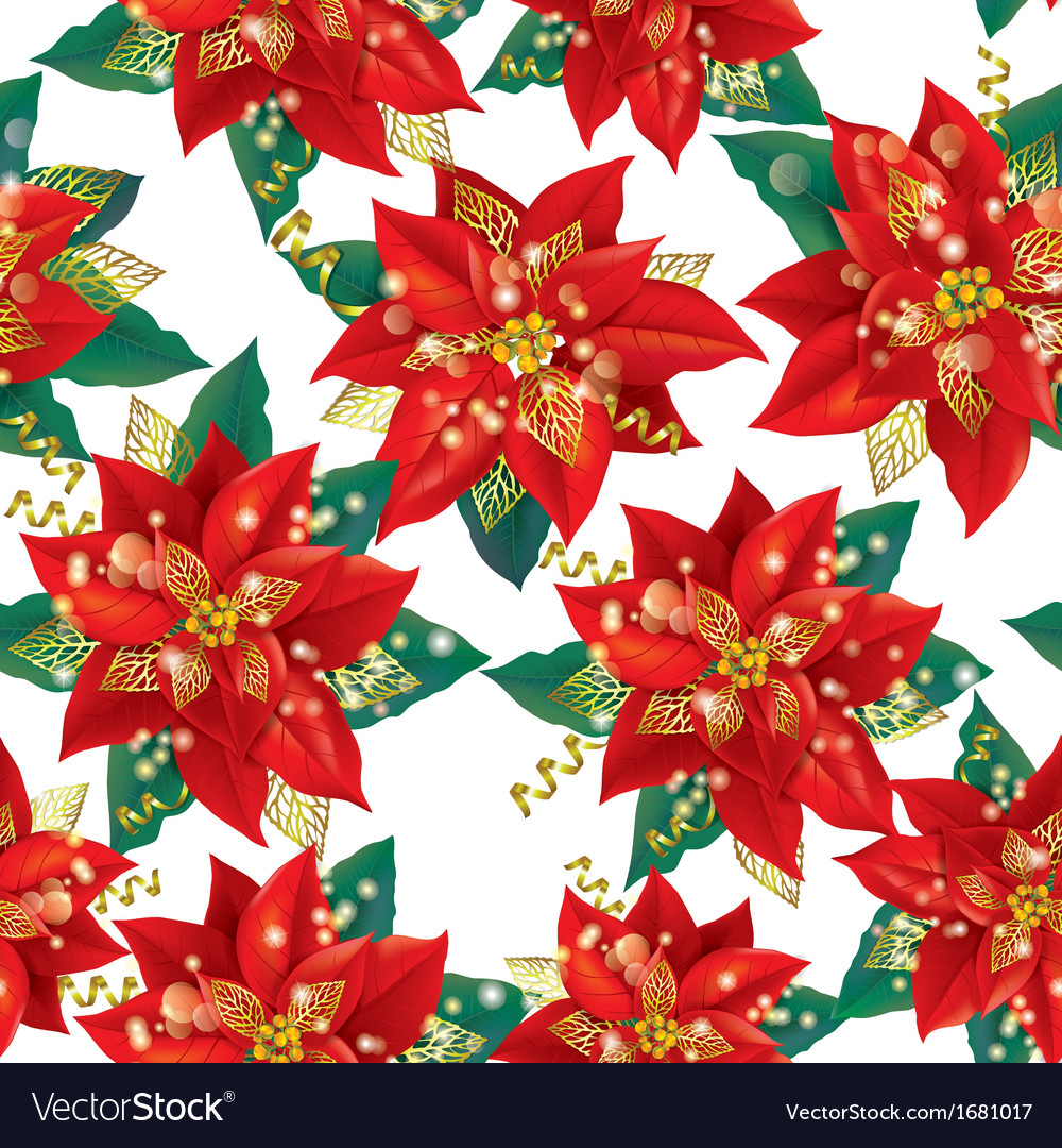 Seamless pattern of christmas poinsettia with vector | Price: 1 Credit (USD $1)