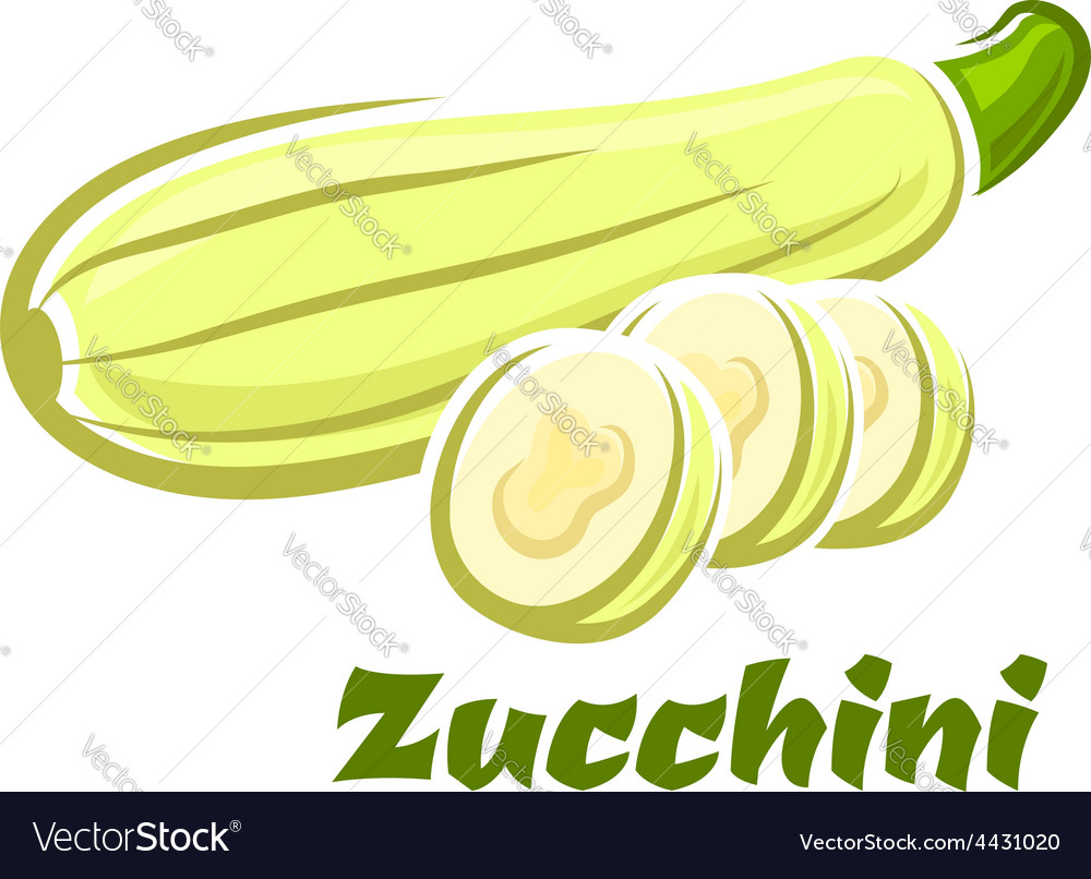 Cartoon whole and sliced fresh zucchini vegetable vector   Price: 1 Credit (USD $1)