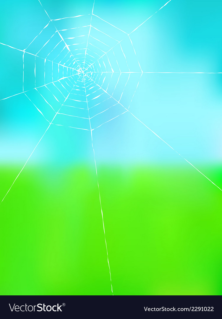 Spider web on color background vector | Price: 1 Credit (USD $1)