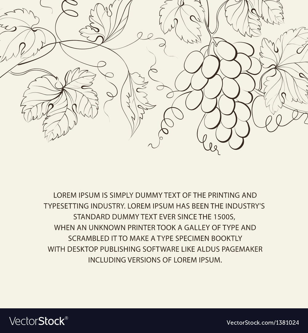 Engraving of grapes branch vector | Price: 1 Credit (USD $1)