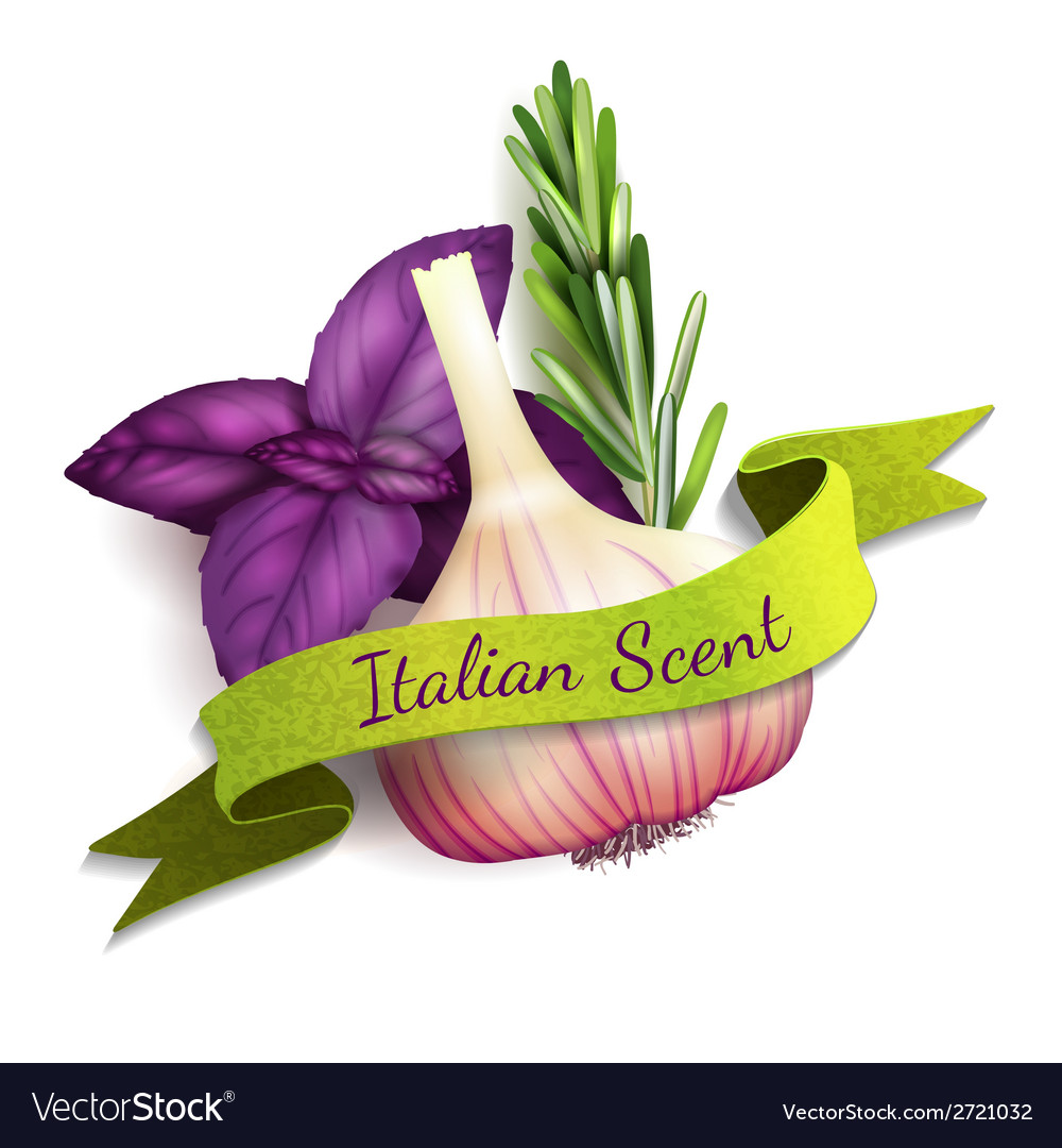 Garlic ribbon badge vector | Price: 3 Credit (USD $3)