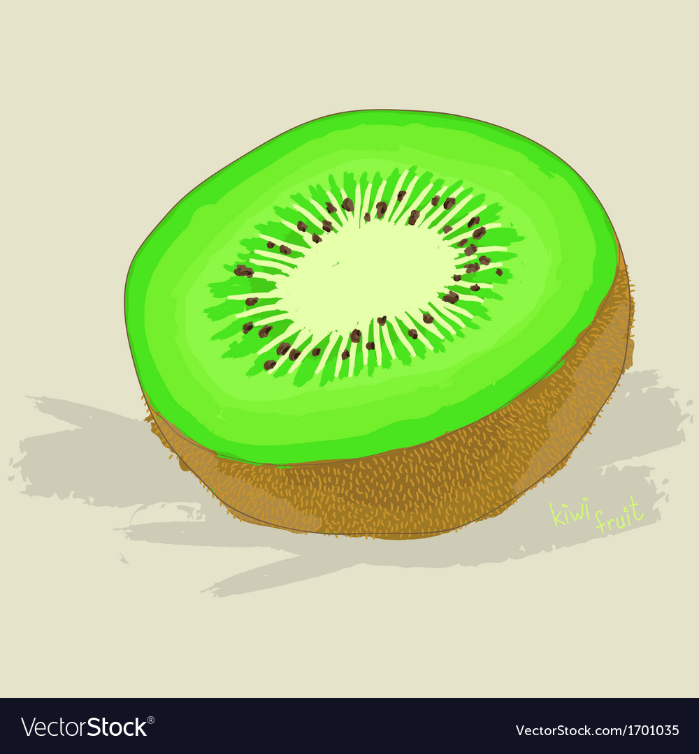 Hand drawn fresh kiwi fruit vector | Price: 1 Credit (USD $1)