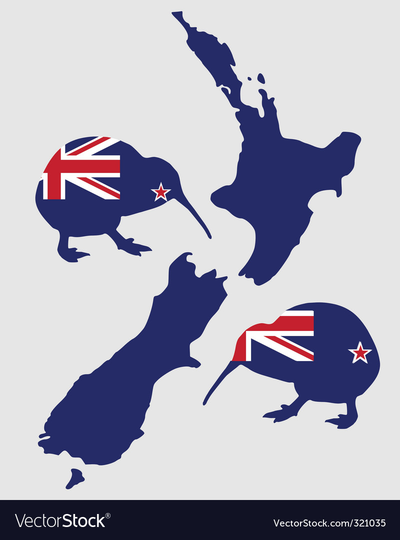 New zealand's kiwi vector | Price: 1 Credit (USD $1)