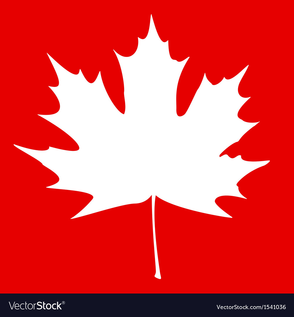 Maple leaf white vector | Price: 1 Credit (USD $1)