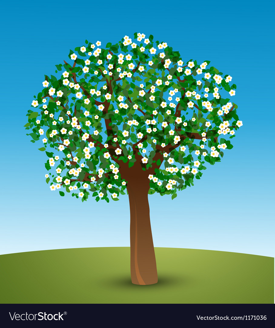 Tree with green leaves and white flowers vector | Price: 1 Credit (USD $1)