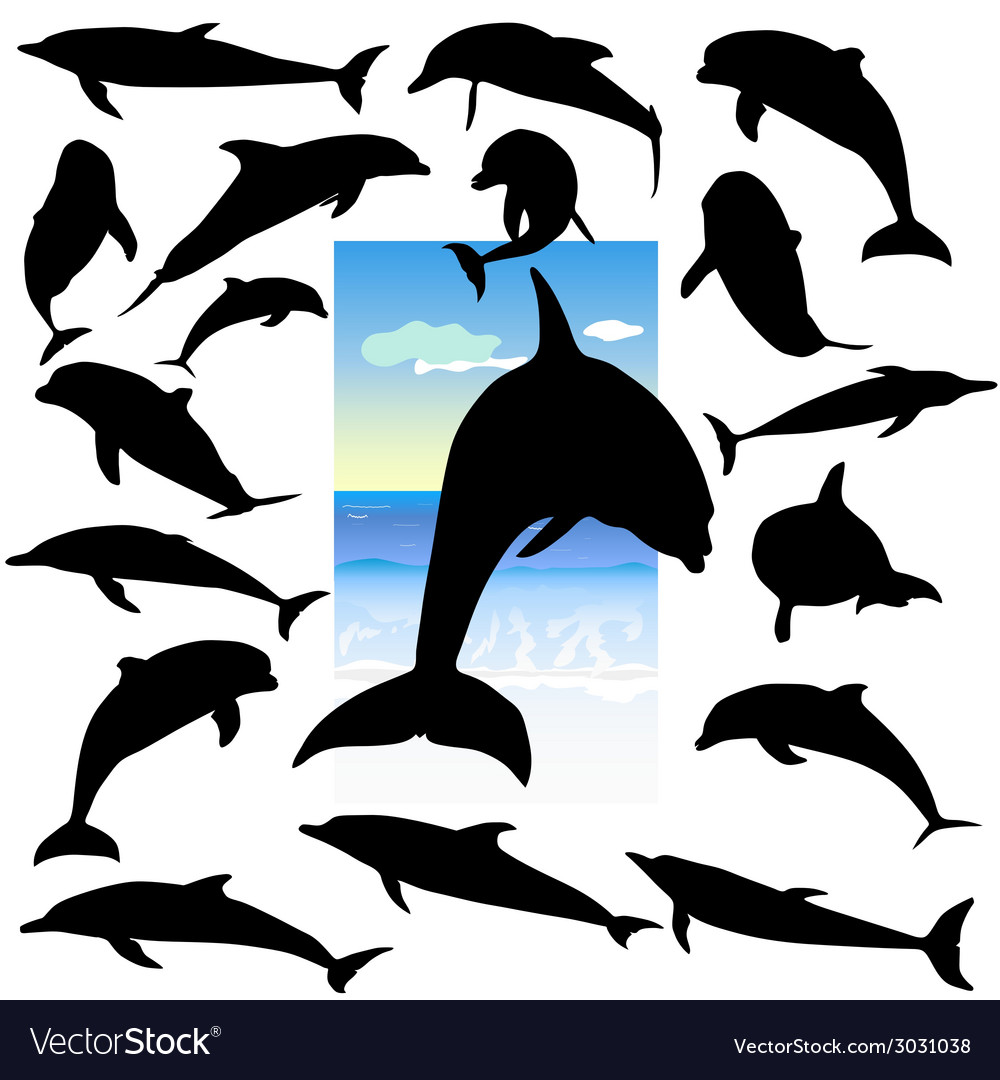 Dolphin black silhouettes vector | Price: 1 Credit (USD $1)