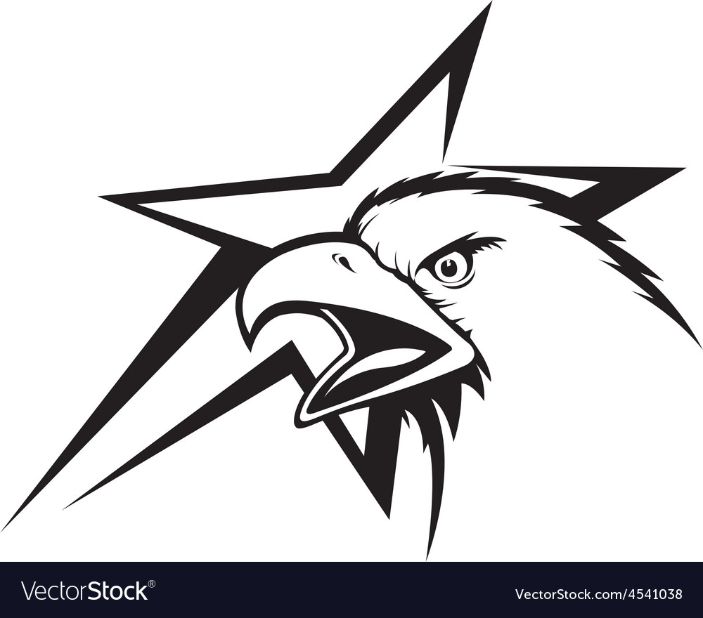 Eagle and star vector | Price: 1 Credit (USD $1)