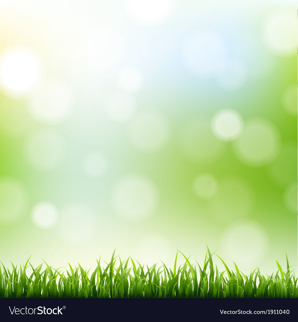 Grass border with bokeh background vector | Price: 1 Credit (USD $1)