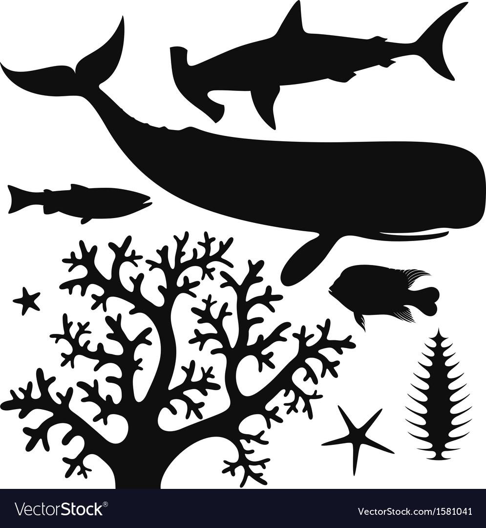 Sea life vector | Price: 1 Credit (USD $1)