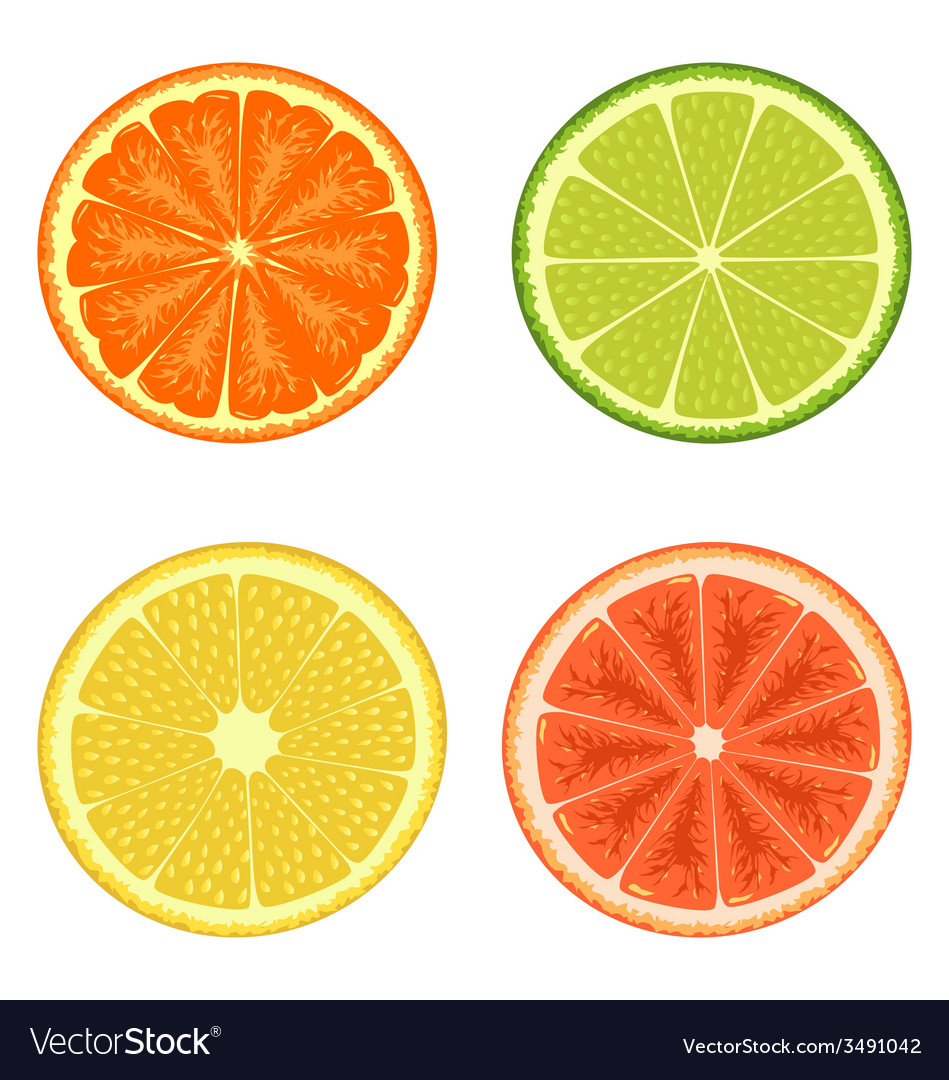 Citrus set isolated on white vector | Price: 1 Credit (USD $1)
