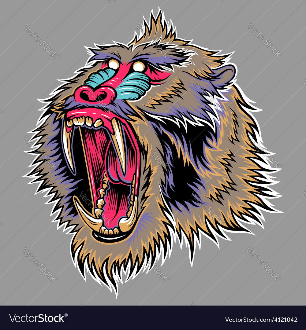 Mandril vector | Price: 1 Credit (USD $1)