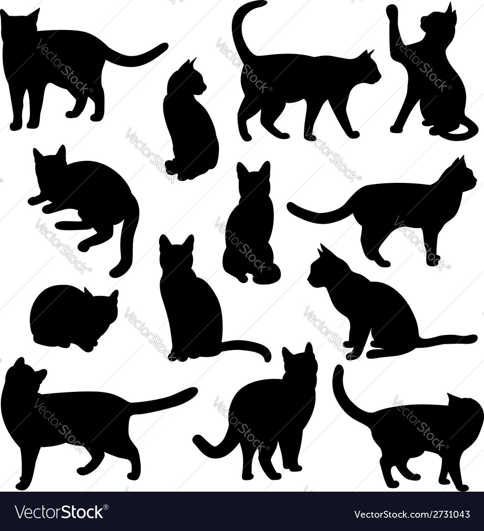 Cats vector | Price: 1 Credit (USD $1)