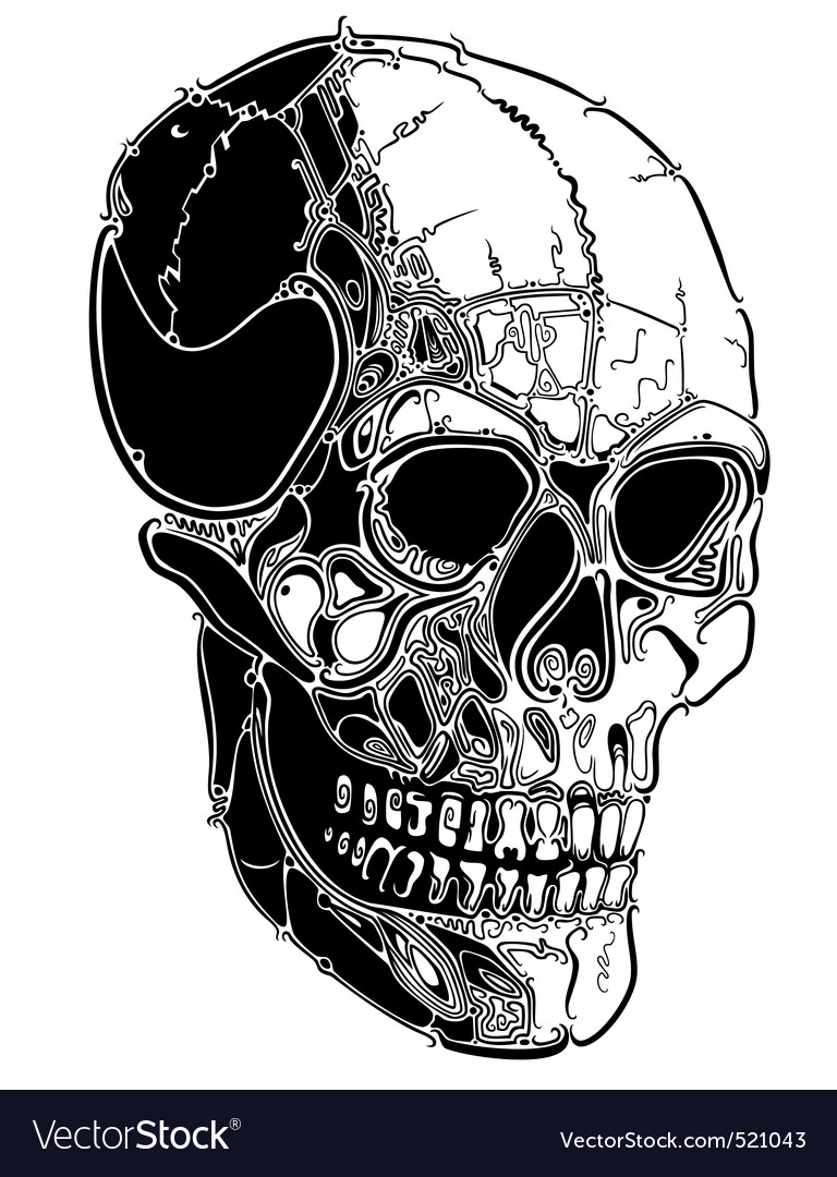 Skull lines vector | Price: 1 Credit (USD $1)