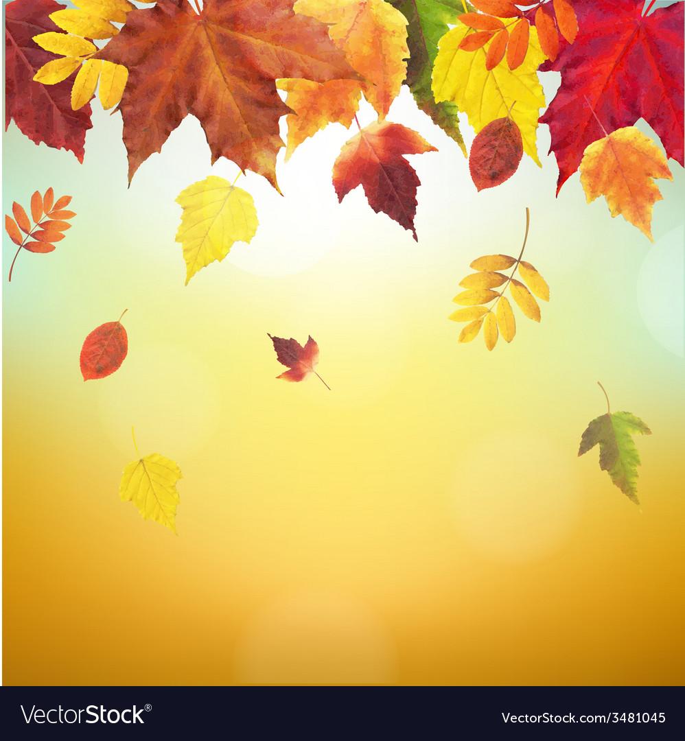 Autumn vintage border vector | Price: 1 Credit (USD $1)