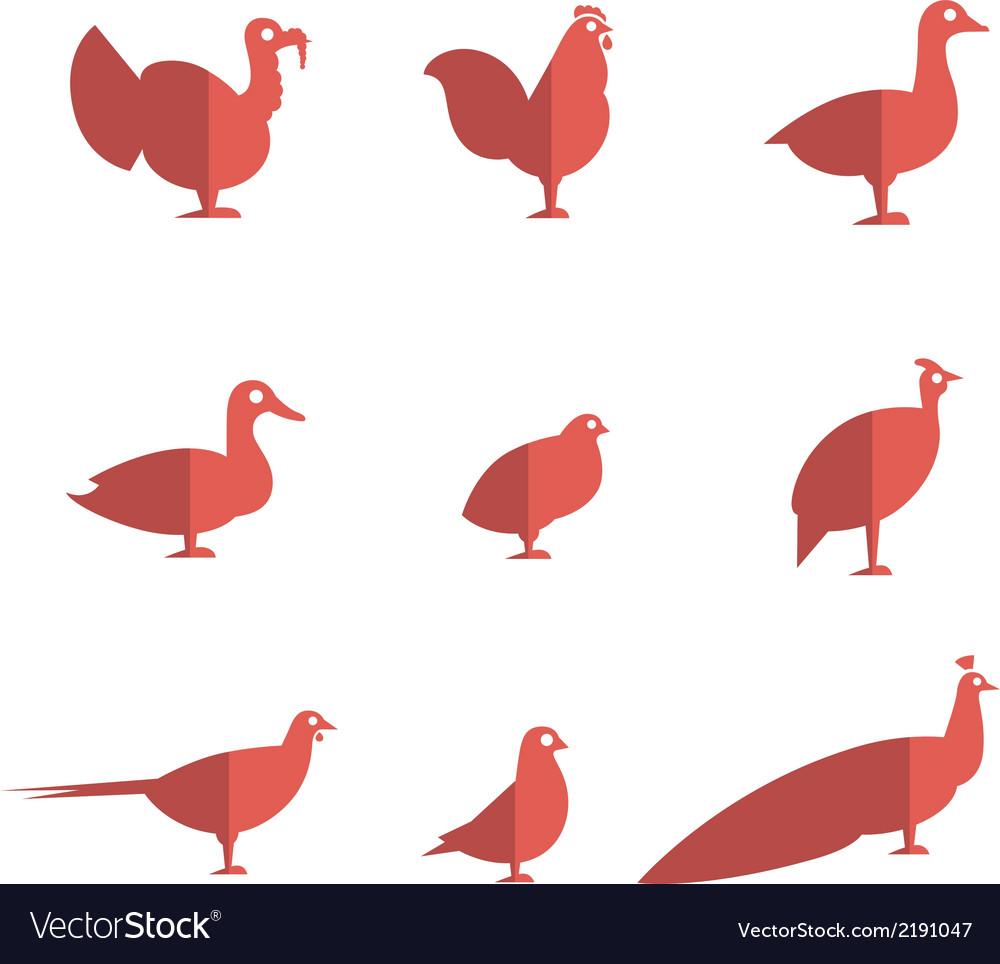 Farm bird flat icons vector | Price: 1 Credit (USD $1)