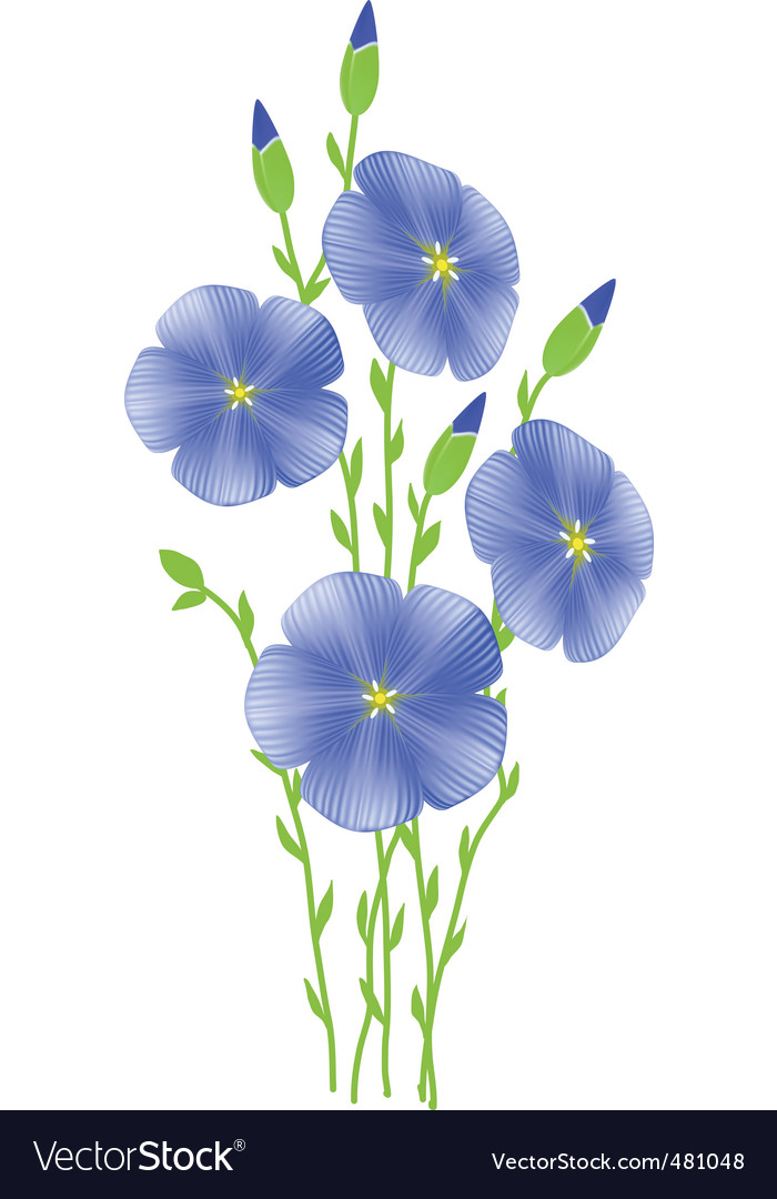 Flower of flax lignum situates vector | Price: 1 Credit (USD $1)