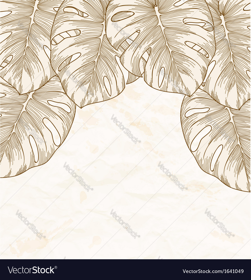Background old crumpled paper with leaves monstera vector | Price: 1 Credit (USD $1)