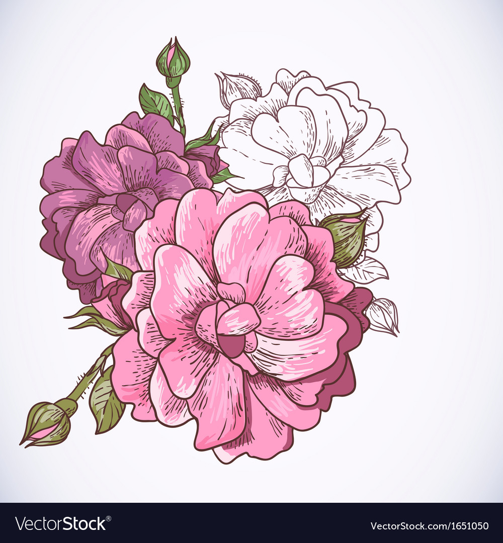 Beautiful rose background vector | Price: 1 Credit (USD $1)