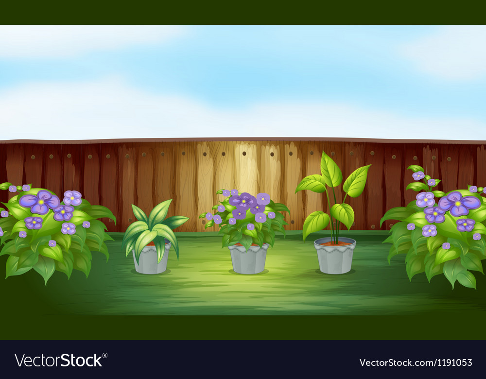 Plants in the backyard vector | Price: 1 Credit (USD $1)
