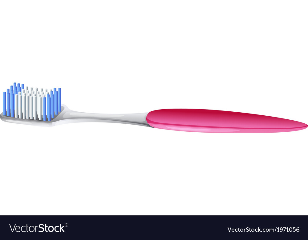 A toothbrush vector | Price: 1 Credit (USD $1)