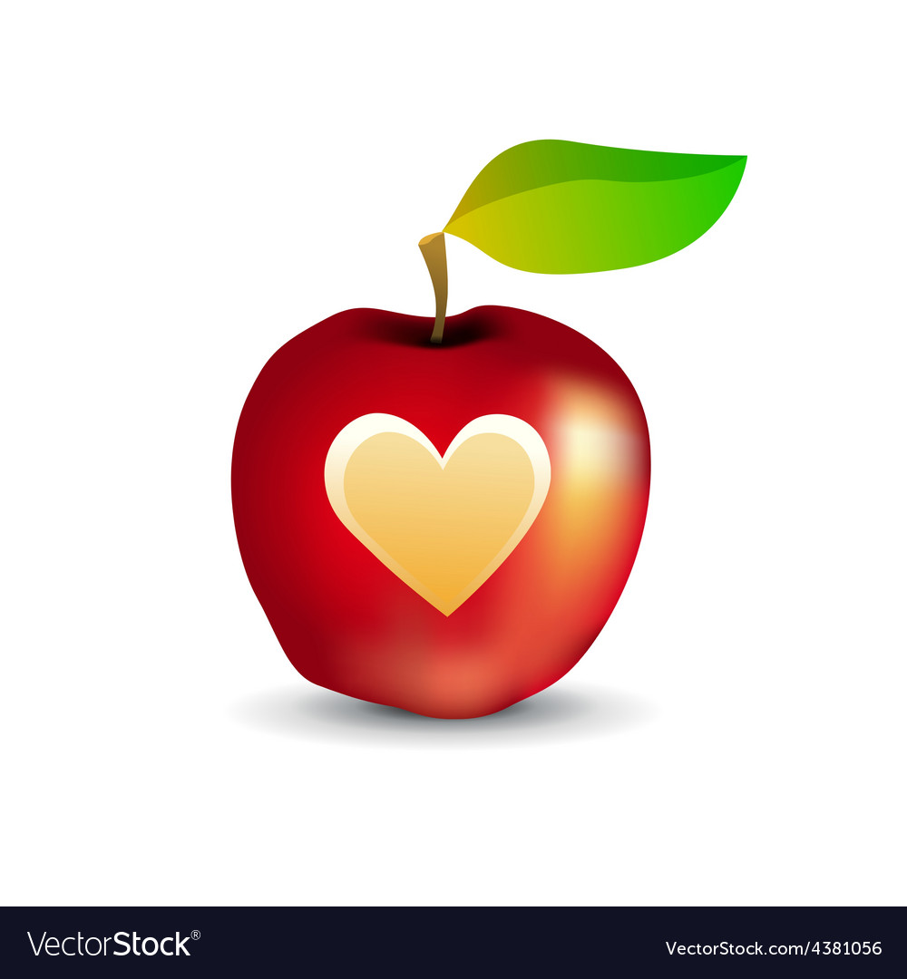 Icon of tasty apple with heart vector | Price: 1 Credit (USD $1)