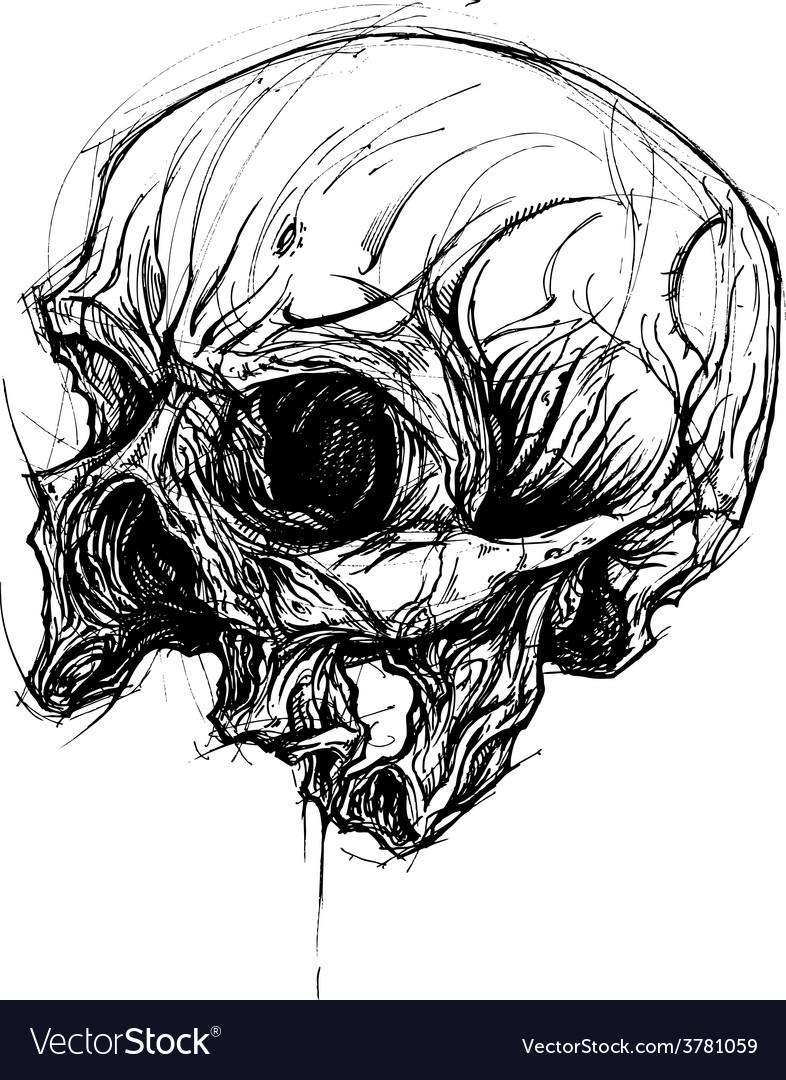 Broken skull drawing line work vector | Price: 3 Credit (USD $3)