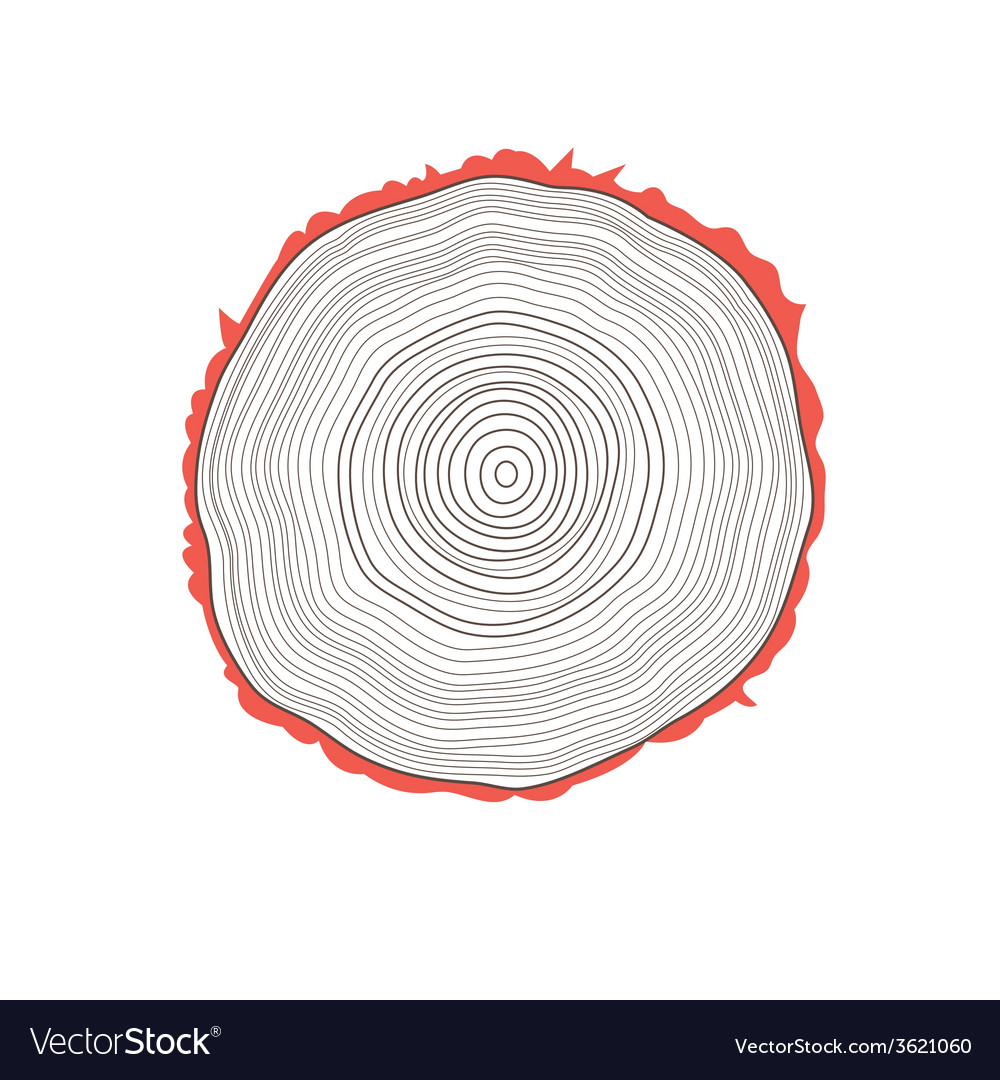 Cut of a tree vector | Price: 1 Credit (USD $1)