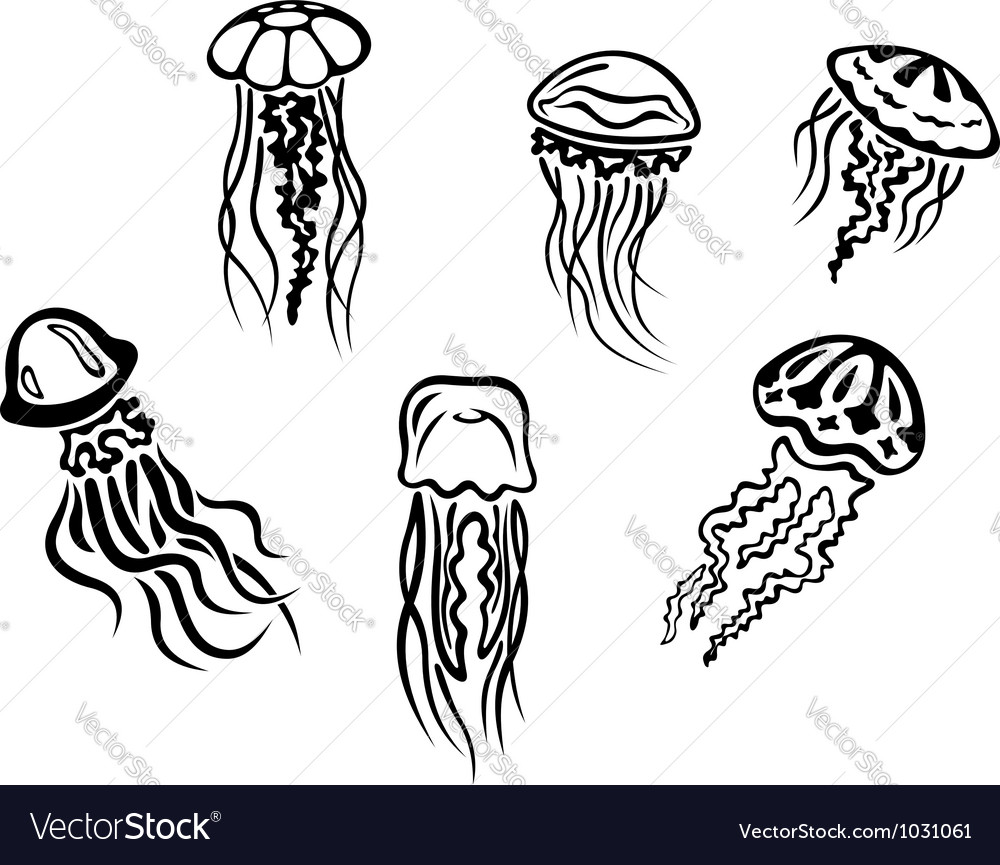 Different underwater jellyfishes vector | Price: 1 Credit (USD $1)