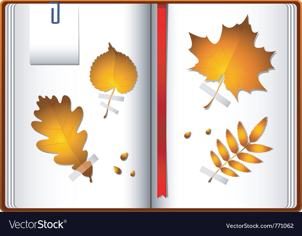 Autumn notebook vector | Price: 1 Credit (USD $1)
