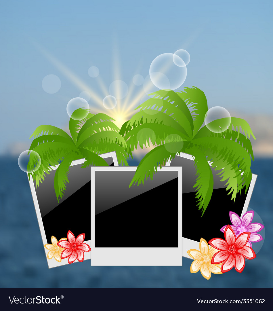 Set photo frame with palms flowers on blurred vector