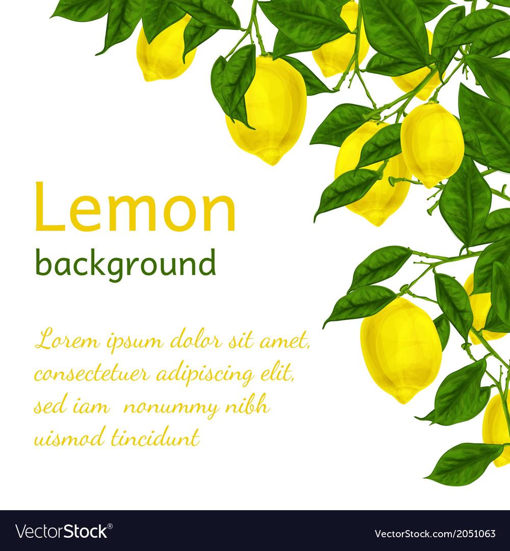 Lemon background poster vector | Price: 1 Credit (USD $1)