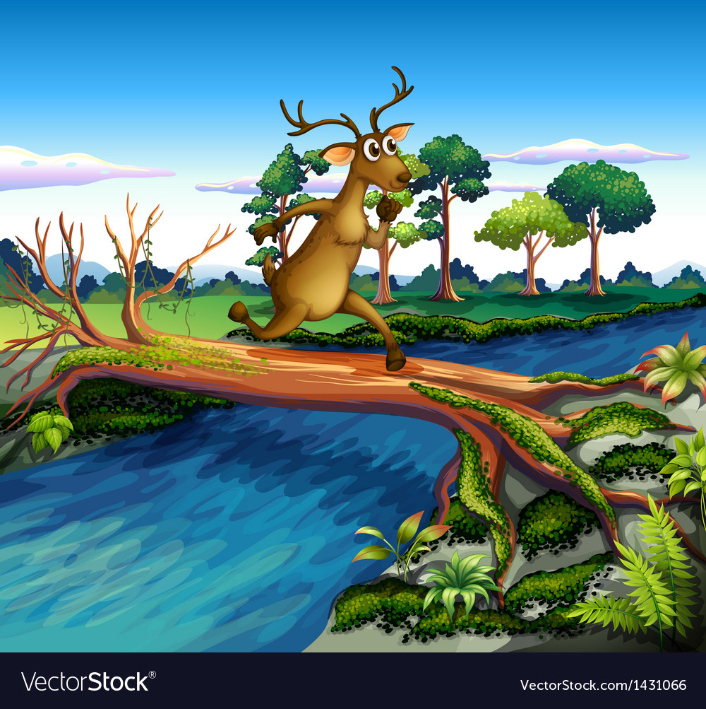 A deer crossing the river vector | Price: 1 Credit (USD $1)
