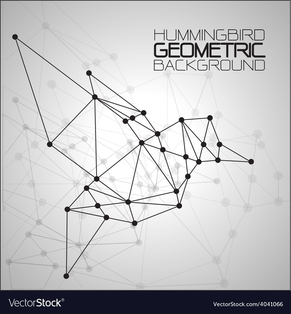 Hummingbirds geometric background vector