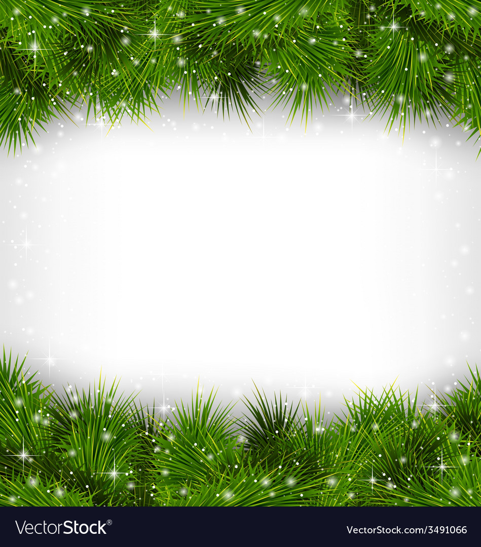 Pine branches like frame on grayscale vector   Price: 1 Credit (USD $1)