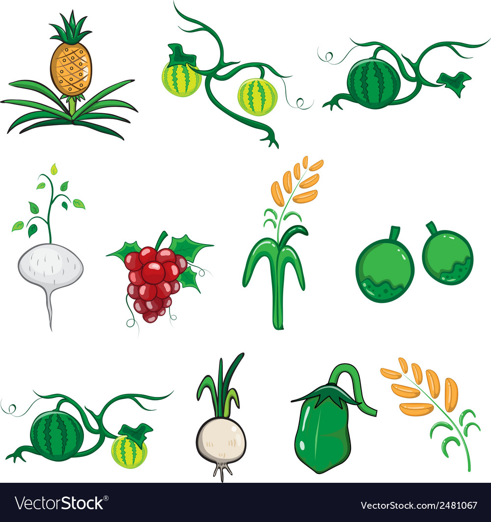 Fruit and vegetable cartoon vector | Price: 1 Credit (USD $1)
