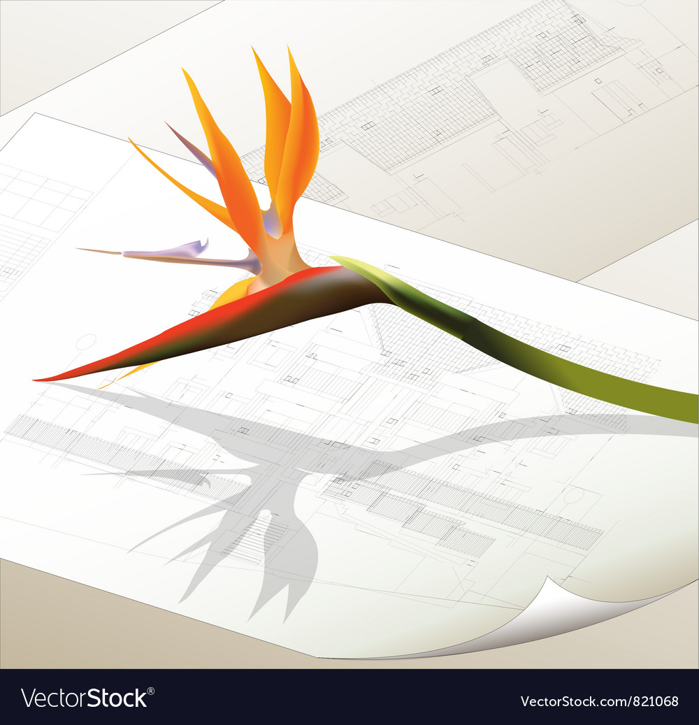 Architectural background with a flower vector | Price: 3 Credit (USD $3)