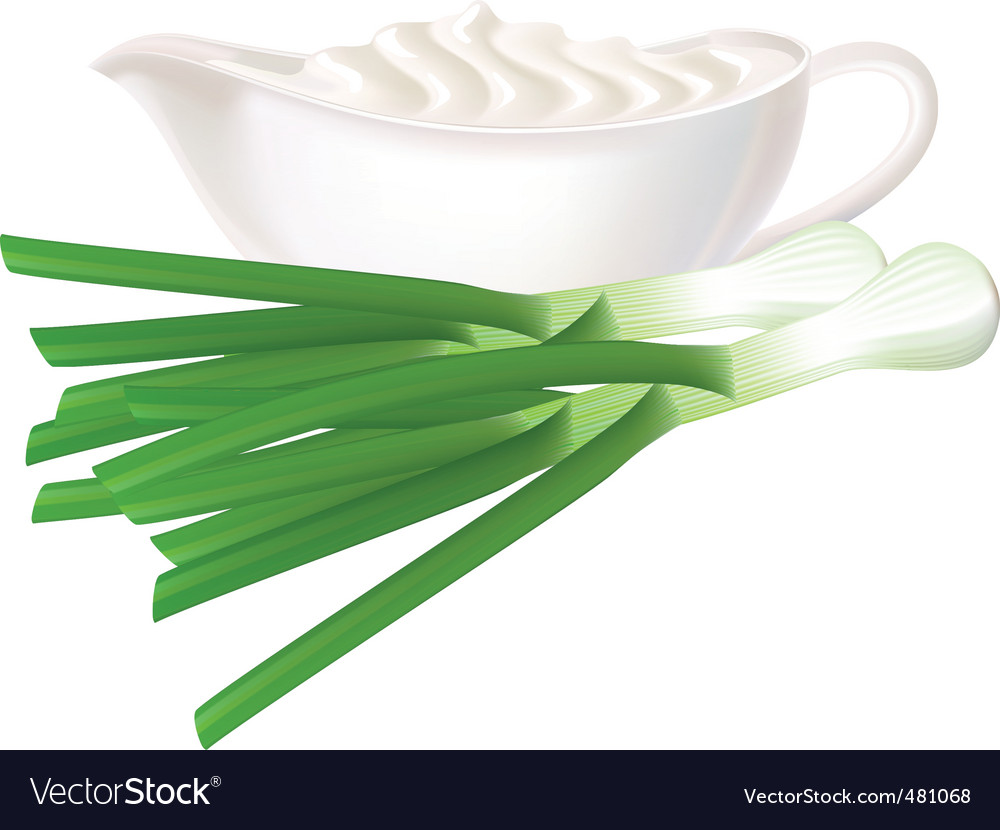 Sour cream and green onions vector | Price: 1 Credit (USD $1)