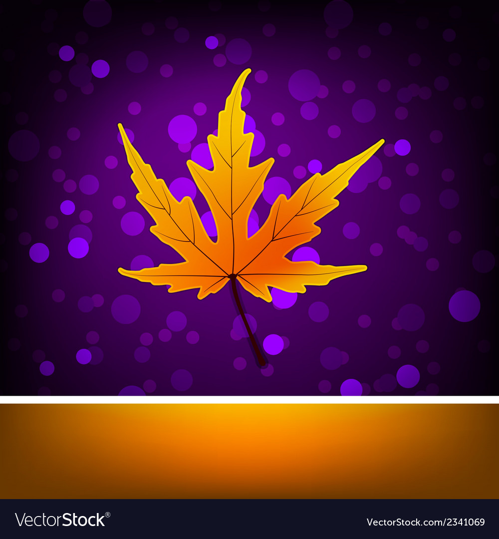 Card with autumn maple leaf template eps 8 vector | Price: 1 Credit (USD $1)
