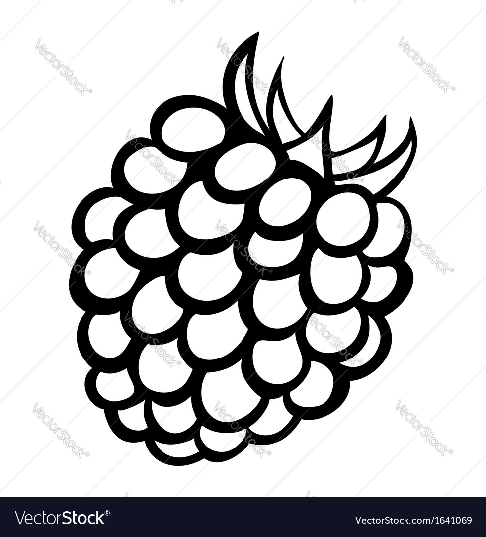 Monochrome of raspberry logo vector   Price: 1 Credit (USD $1)