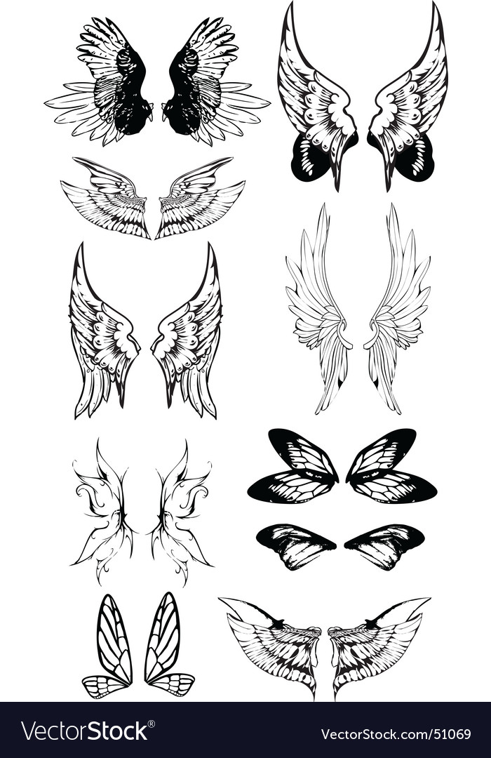 Wing tattoo set vector | Price: 1 Credit (USD $1)