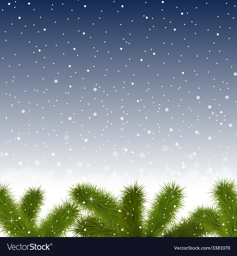 Christmas snowy background with fir branches vector | Price: 1 Credit (USD $1)