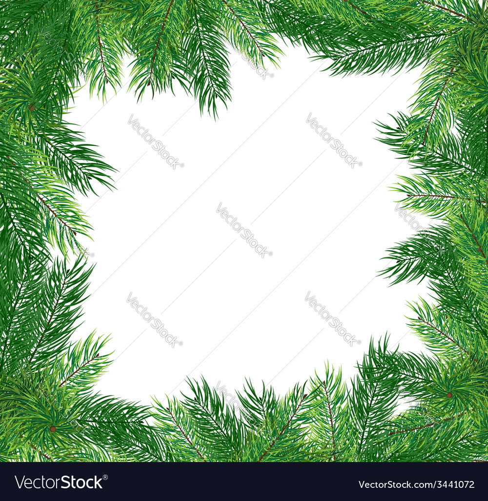 Fir branches christmas frame vector | Price: 1 Credit (USD $1)
