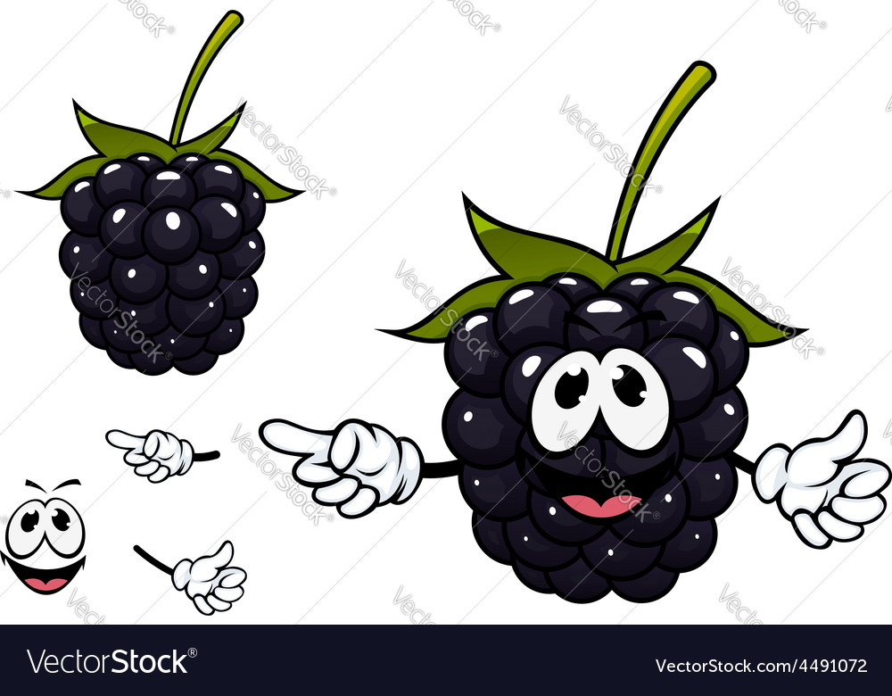Funny ripe blackberry fruit character vector | Price: 1 Credit (USD $1)