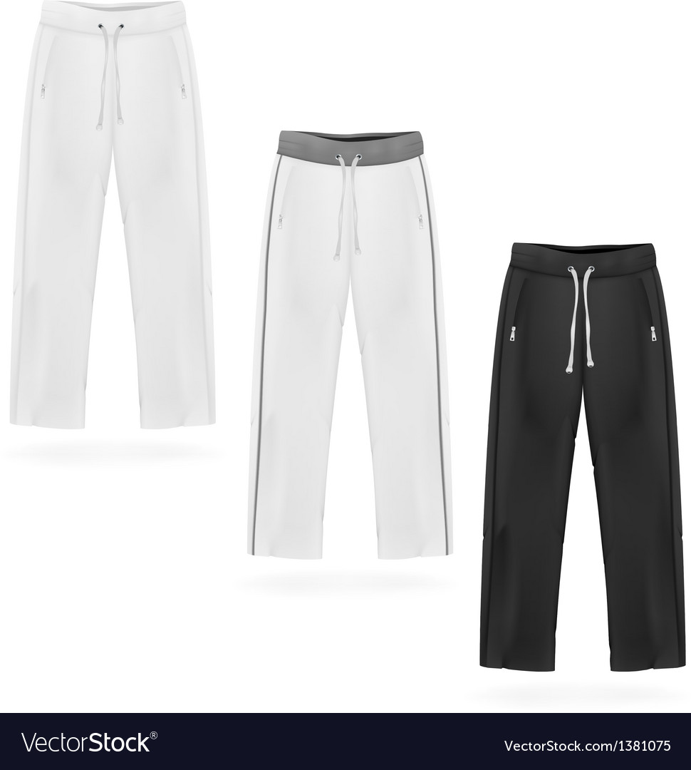 Sport sweatpants set vector | Price: 1 Credit (USD $1)