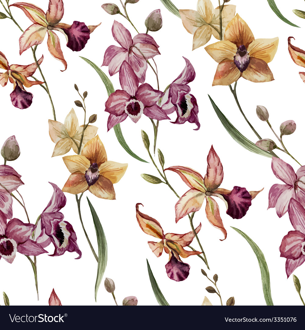 Beautiful orchid flower8 vector   Price: 1 Credit (USD $1)