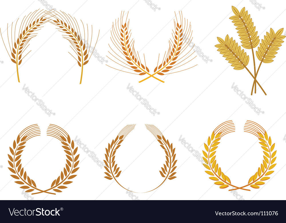 Cereal wreaths vector | Price: 1 Credit (USD $1)