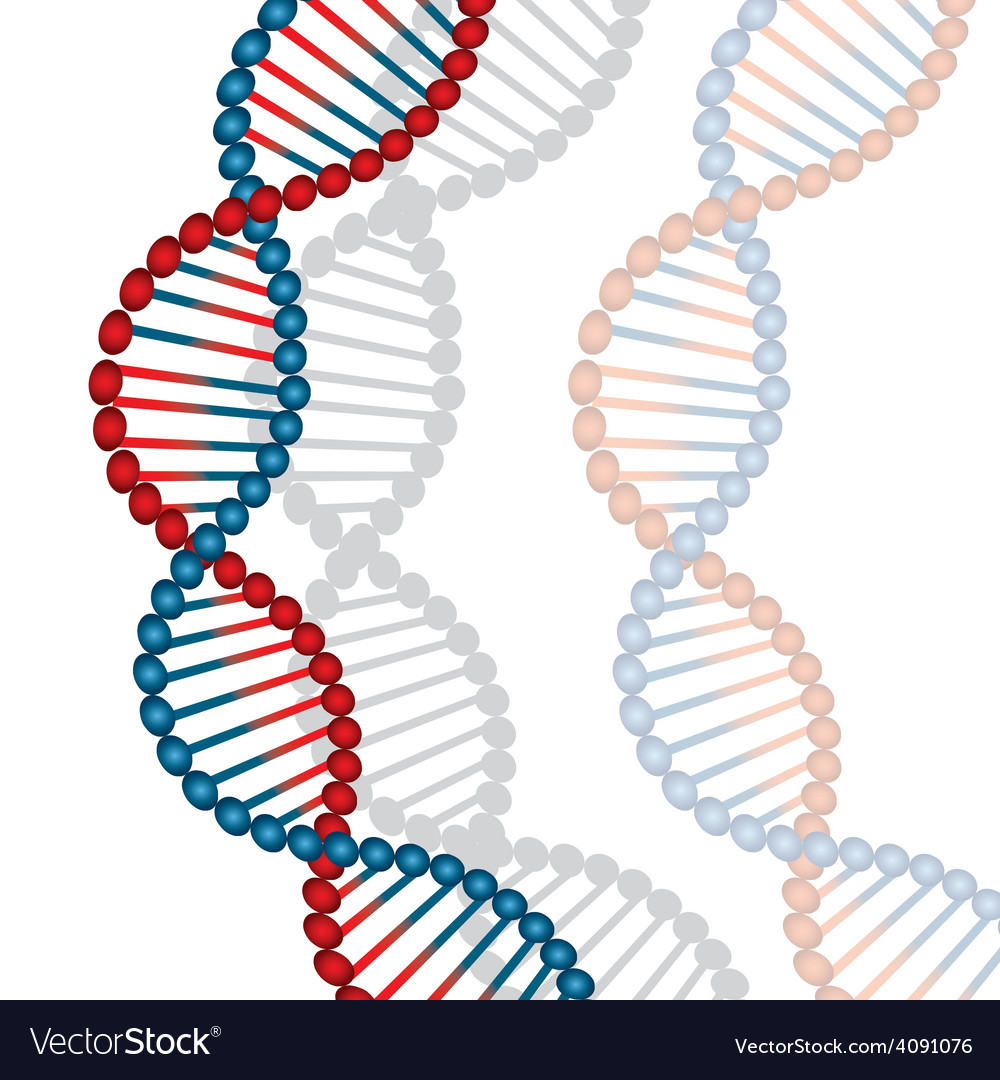 Dna design vector | Price: 1 Credit (USD $1)