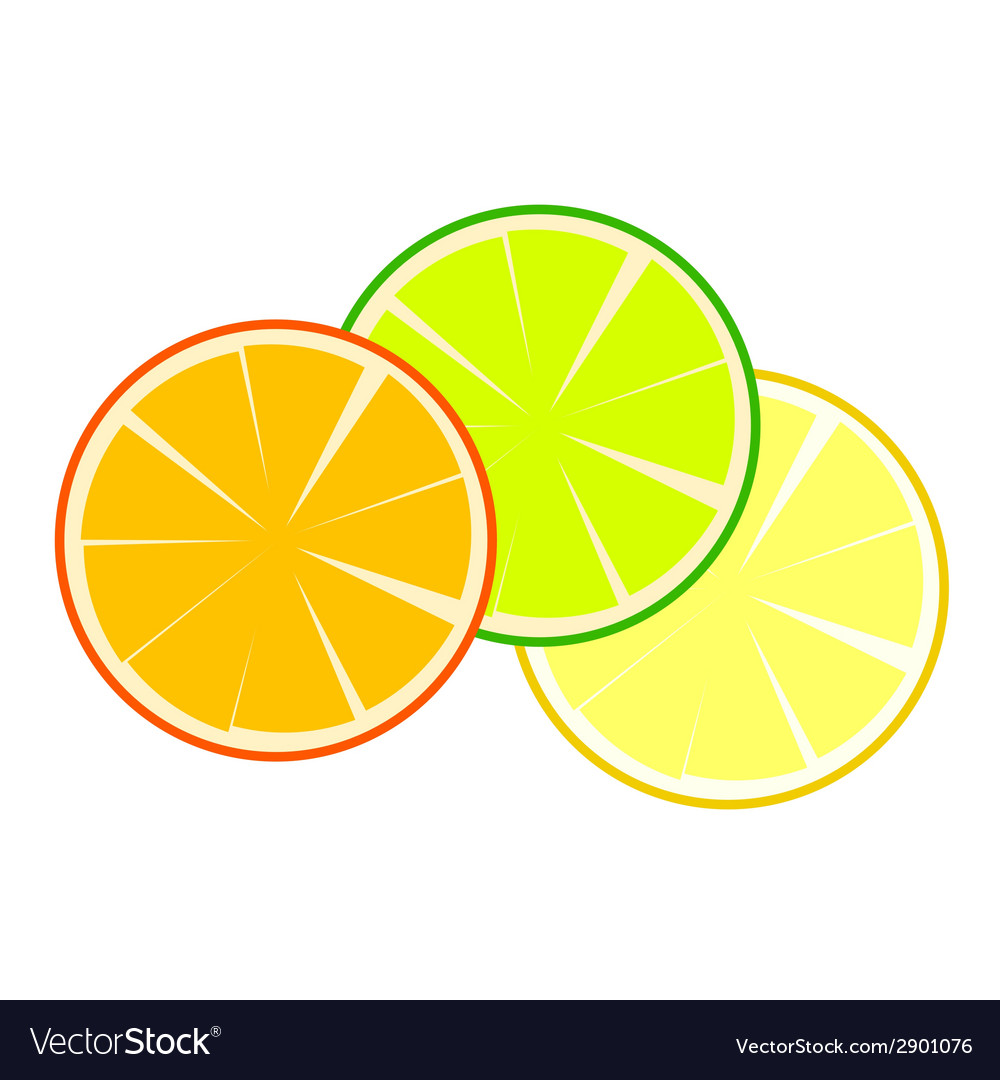 Fruit orange vector | Price: 1 Credit (USD $1)